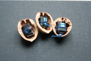 miniature books in walnut shells