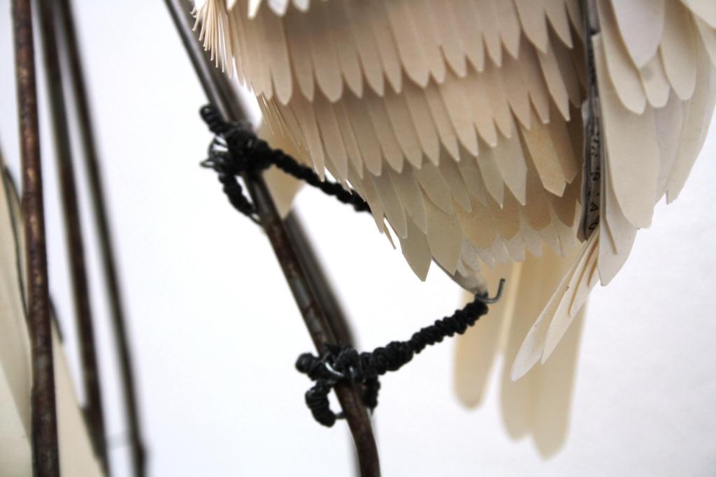flight-detail, bird feet, artwork by H. Kurzke, 2019